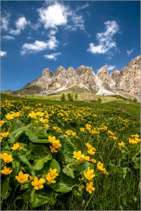 Premium poster Spring in South Tyrol