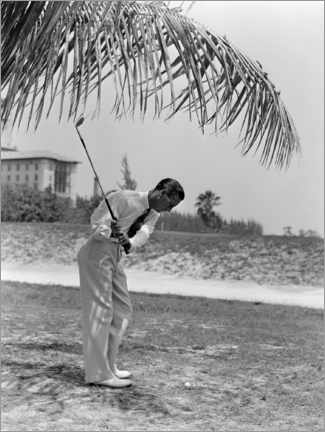 Premium poster  Golfer under palm trees in Florida, 1930s