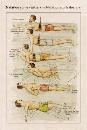 Wood print  Swimming Styles (French) - Wunderkammer Collection