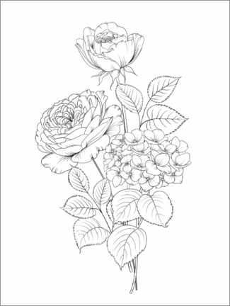 Colouring poster Rose bouquet I