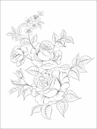 Colouring poster Wild roses