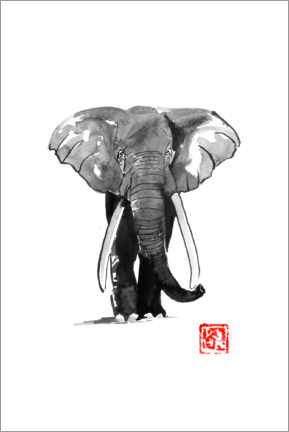 Gallery print  Elephant - Péchane