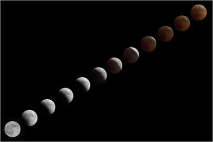 Canvas print  Eclipse - Paul Heasman