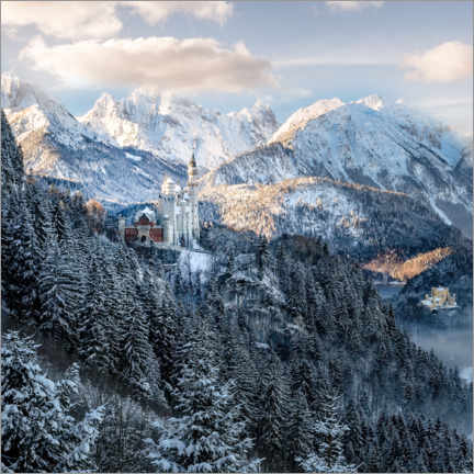 Premium poster  Neuschwanstein Castle in winter, Allgäu, Bavaria - Christian Müringer