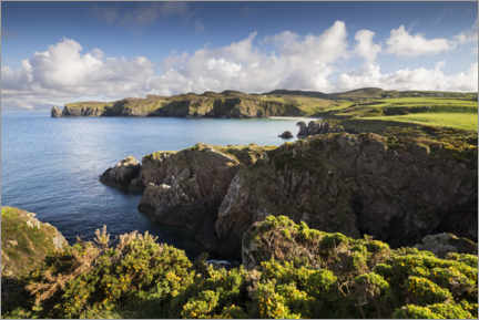 Premium poster  Ireland's coastline with hills and coves in sunshine - The Wandering Soul