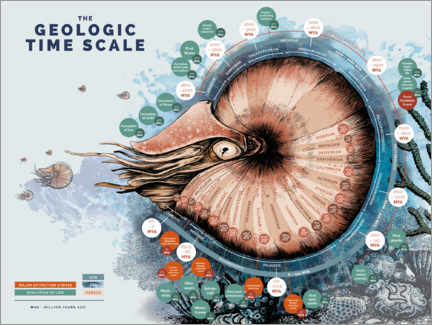 Premium poster  The Geological Time Scale (English) - Velozee