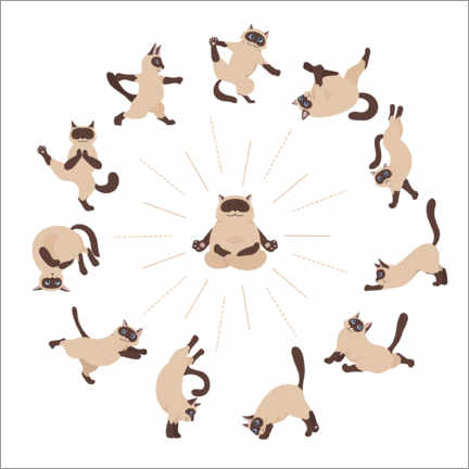 Canvas print  Yoga cats II