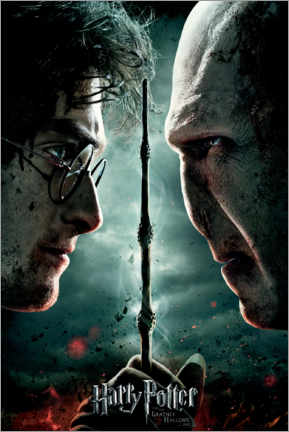 Canvas print  The Deathly Hallows II - Duel