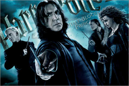Acrylic print  The Half-Blood Prince - Death Eaters