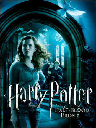 Wood print  The Half-Blood Prince - Hermione & Ron