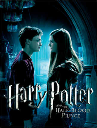 Premium poster  The Half-Blood Prince - Harry & Ginny