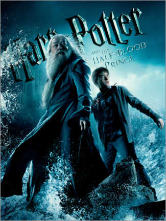 Acrylic print  The Half-Blood Prince - Harry & Dumbledore
