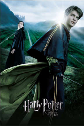 Premium poster  The Goblet of Fire - Cedric & Cho Chang