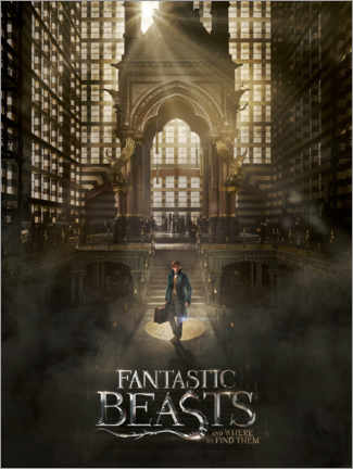 Gallery print  Fantastic Beasts and Where to Find Them - Newt
