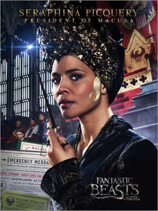Foam board print  Fantastic Beasts and Where to Find Them - Seraphina Picquery