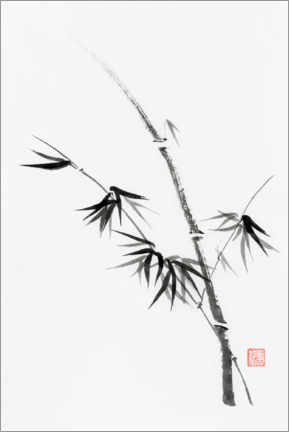 Acrylic print  Bamboo stem with leaves - Oleksiy Maksymenko