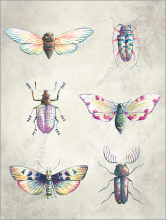 Gallery print  Colorful beetles - Leonora Camusso