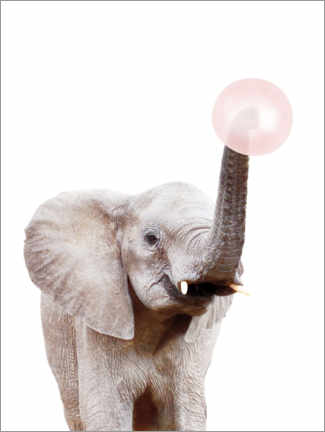 Premium poster  Elephant with Bubble gum - Sisi And Seb