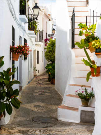 Premium poster White houses in a narrow alley