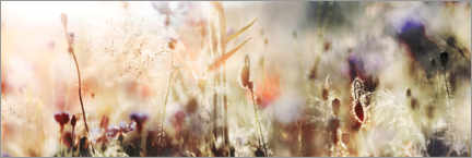 Wood print  Grasses and wildflowers in pastel colors - Lichtspielart
