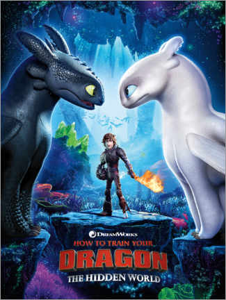 Premium poster The Hidden world - Toothless & Light Fury