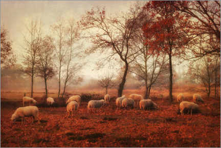 Canvas print  The last days of autumn - Ellenvan Deelen