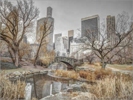 Acrylic print  Central Park in New York - Assaf Frank