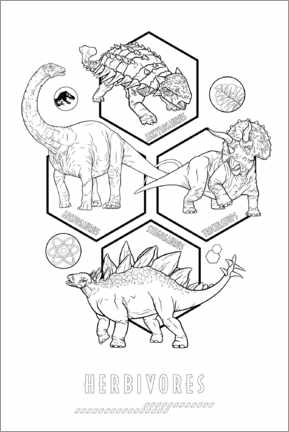 Colouring poster  Herbivores