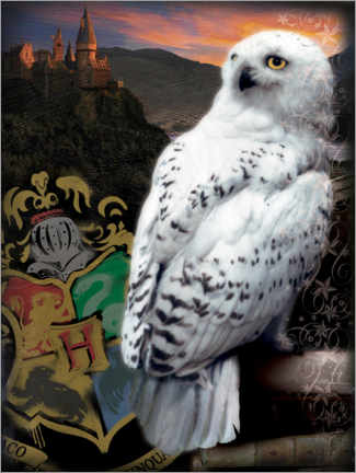 Premium poster  The Half-Blood Prince - Hedwig