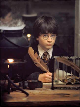 Canvas print  The young Harry Potter