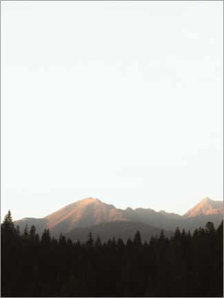 Premium poster  Mountains and forest in the morning light - Lukas Saalfrank