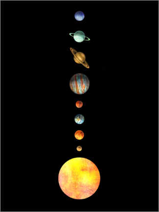 Premium poster  The Solar System - Terry Fan