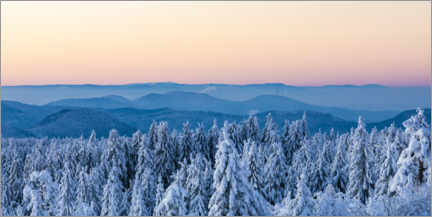 Premium poster  Winter in the Black Forest National Park - Dieterich Fotografie