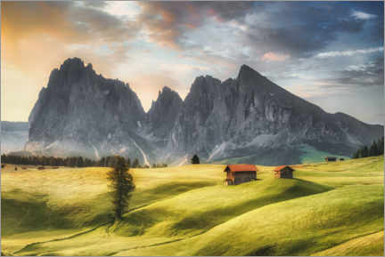 Gallery print  Alpine meadow on the Seiseralm in the Dolomites - Mandfred Voss