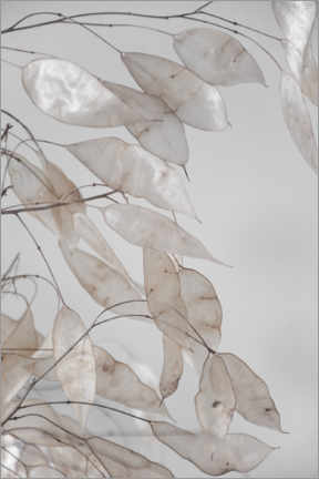 Premium poster  Abstract branches - collection from the forest in beige & white - Studio Nahili