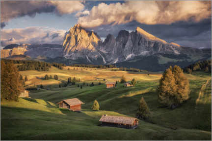 Gallery print  Evening light on the Alm - André Wandrei