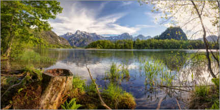 Premium poster  Early summer at the Almsee - Silvio Schoisswohl