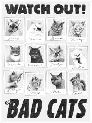 Premium poster  Watch out for bad cats - Janta Island