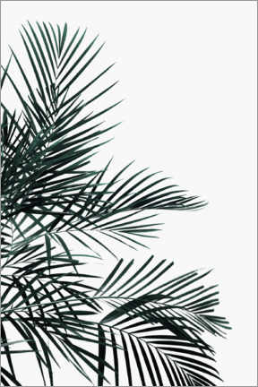 Premium poster Palm tree in the wind