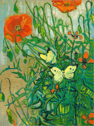 Aluminium print  Butterflies and poppies - Vincent van Gogh