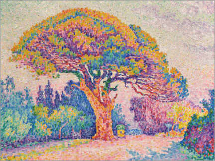Wood print  Pine tree in Saint-Tropez - Paul Signac