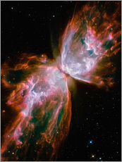 Gallery print  The Butterfly Nebula - Stocktrek Images