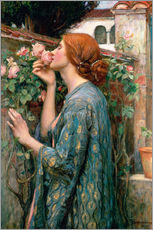 Gallery print  The Soul of the Rose - John William Waterhouse