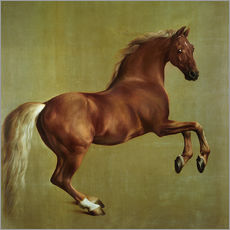 Gallery print  Whistlejacket - George Stubbs