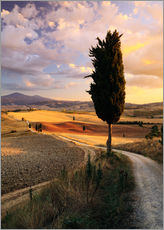 Wall Stickers  Sunset over Val d'Orcia, Tuscany - Matteo Colombo