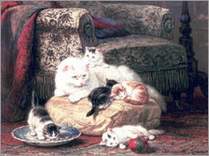 Gallery print  Cat with her Kittens on a Cushion - Henriette Ronner-Knip