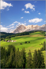 Gallery print  Green valley in South Tyrol - Matteo Colombo