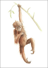 Wall Stickers  monkey - Nadine Conrad