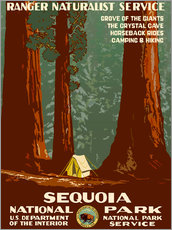 Wall sticker  Sequoia National Park - Travel Collection