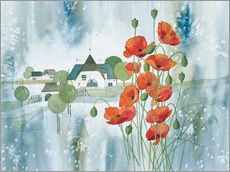 Gallery print  Poppy flower - Franz Heigl